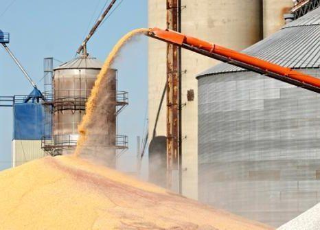 بررسی خواص فیزیک و شیمیایی و رئولوژیکی آردهای تولید شده درطی فرآیند آسیاب